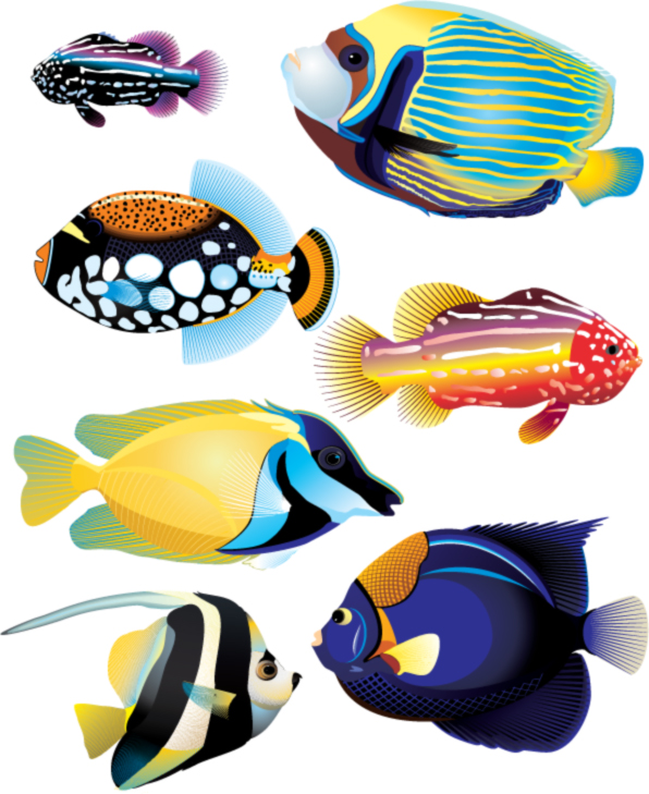 free vector Animal fish realistic and abstract vector material